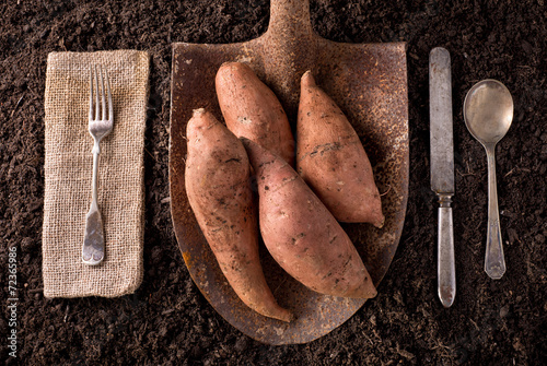 Sweet Potato Yams