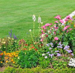 beautiful flower bed and green grass