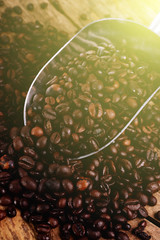 coffee beans and morning sunlight