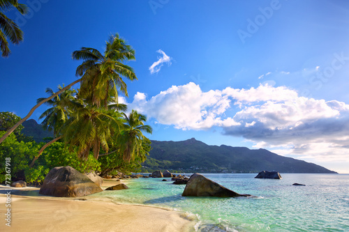 Tropical beach with palms and rocks in Mahe Island, Seychelles © Oleksandr Dibrova