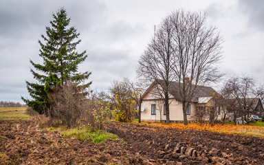 Autumn landscape with tree and house
