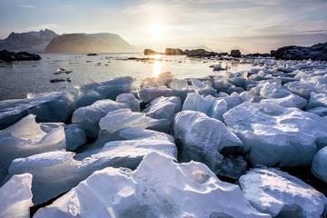 Arctic fjord landscape - ice on the shore - Spitsbergen