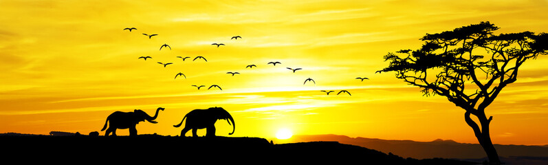 paisaje panoramico de una amancer africano