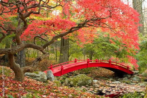 Japanese Garden - 72372777