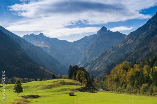Grüne Wiese im Allgäu mit Gipfel von einem Berg