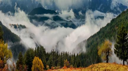 Autumn fog in the mountains