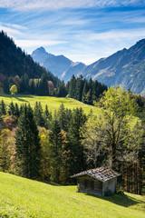 Hütte aus Holz auf grüner Wiese