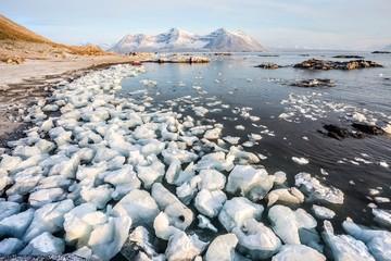 Sunny morning in the Arctic - Spitsbergen, Svalbard