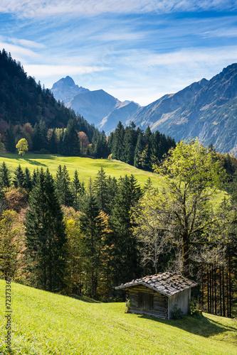Leinwanddruck Bild Hütte aus Holz auf grüner Wiese