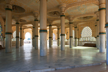 Moscheae