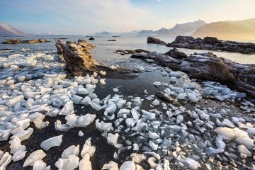 Arctic landscape with the glacier ice