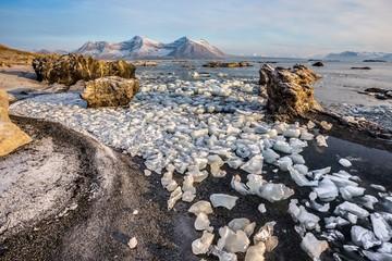 Arctic landscape - sunny morning
