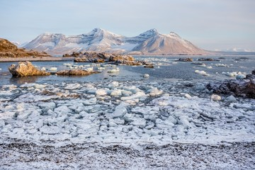 Ice on the Arctic shore - Spitsbergen, Svalbard