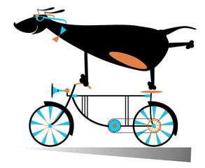 Comic dog is riding a bike