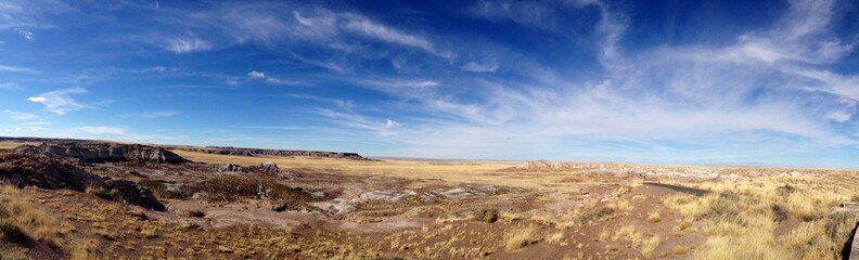 Wide Open Space Out West