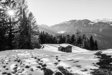 Berghütte auf der Waldlichtung in schwarz weiß