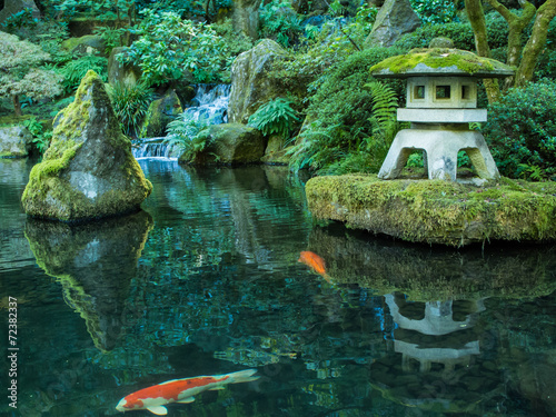 Foto Spatwand Tuin A Lantern and Koi in the Portland Japanese Garden