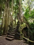 Bridge at Monkey Forest Sanctuary in Ubud, Bali, Indonesia - 72382927