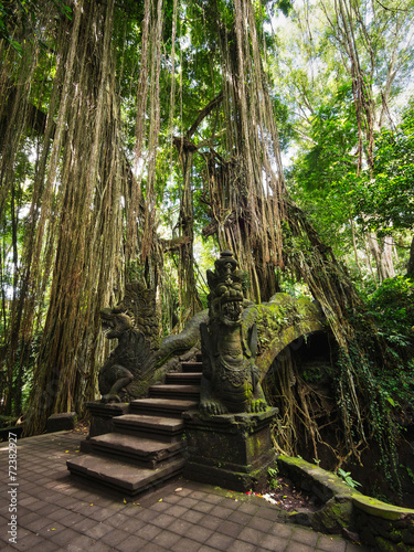 Foto op Plexiglas Indonesië Bridge at Monkey Forest Sanctuary in Ubud, Bali, Indonesia