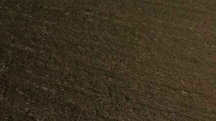 champ terre vue aérienne