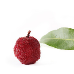 Waxberry or red bayberry on white background