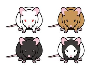 ハツカネズミ (正面)