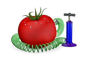 Pump swings air in a tomato