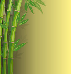 Green bamboo on yellow background