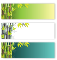 Bamboo flyers set on different colors backgrounds