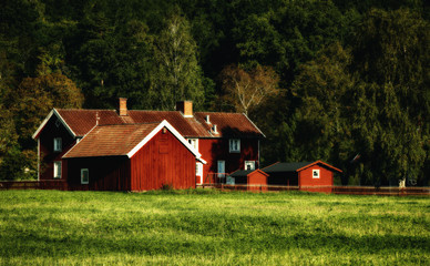 old rural farm in a vintage processing and setting