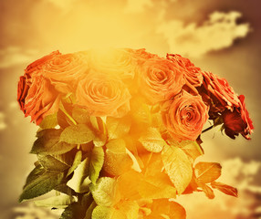 Red wet roses flowers bouquet on sky. Vintage
