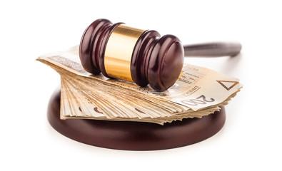 judge gavel and polish money isolated on white
