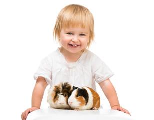 Little girl holding a guinea pig