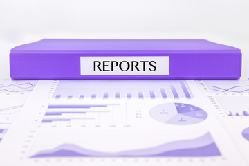 Assessment and evaluation reports with graphs, charts and data a