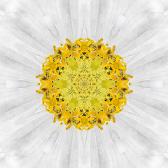 White Mandala Flower. Concentric Kalaidoscope Design