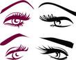 Постер, плакат: Beautiful girls eyes and lashes set