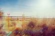 sunny farmland landscape