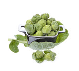 brussels sprouts compromised in a porcelain vessel i poster