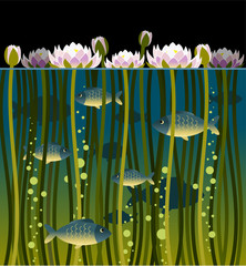 Illustration of water lily and the fish