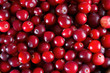 Red fresh cranberries background