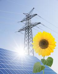 Strommast, Solaranlage und Sonnenblume
