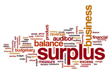 Surplus word cloud