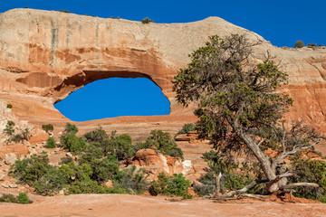 Wilson's Arch Landscape Moab Utah