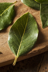 Green Organic Bay Leaves
