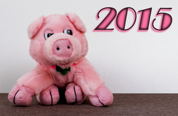 2015, Schwein