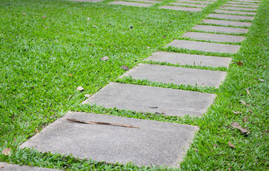 Concrete walking way in the park