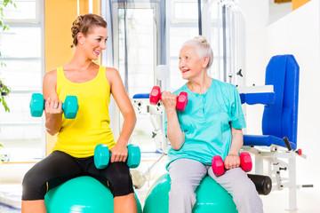 Zwei Frauen beim Hantel Training im Fitness Studio