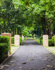 Green city park , walkway for exercise