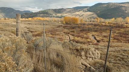 Nicola Valley Ranch Autumn