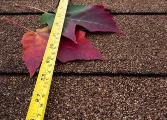 Tape measure and autumn leaves on asphalt shingles